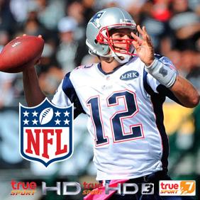 NFL 2016-17